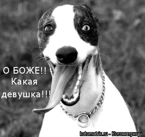 http://suhoi2009.ucoz.ru/_ph/6/2/657881759.jpg