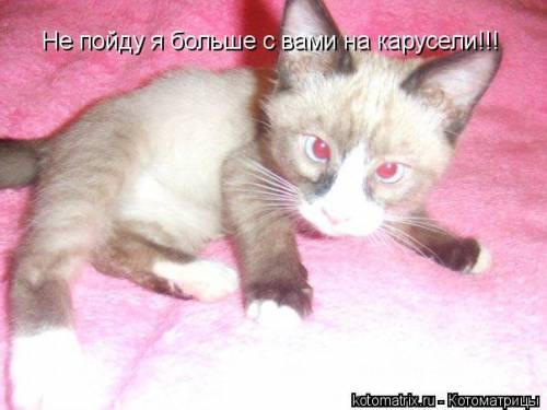 http://suhoi2009.ucoz.ru/_ph/6/2/781228478.jpg